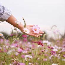 BELLE SEMAINE 💐 - De jolies fleurs champêtres pour vous souhaiter une belle semaine. - #fleurs #printemps #bellesemaine