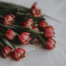 FÊTE DES MÈRES 💐 - Bonne fête à toutes les mamans, célébrons les comme il se doit et aimons les infiniment. - #fetedesmeres #bonnefetemaman #bouquetdefleurs